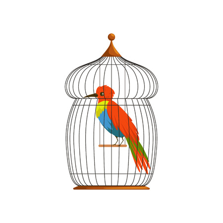 Big bird with long, brilliantly green, blue and red plumes. Cartoon character of tropical animal in old wire cage. Flat vector design for postcard, poster or flyer.