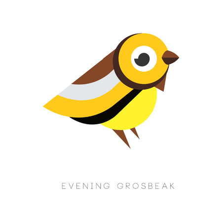 Abstract of evening grosbeak. Colorful bird from simple geometric figures. Flat vector design for print or emblem of business company.