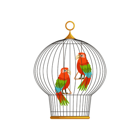 Two beautiful long-tailed macaws ara in metallic round cell. Tropical birds with colorful feathers. Info graphic element for pets healthcare flat vector design.