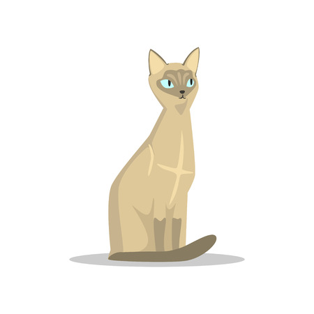 Cartoon character of Siamese cat vector illustration