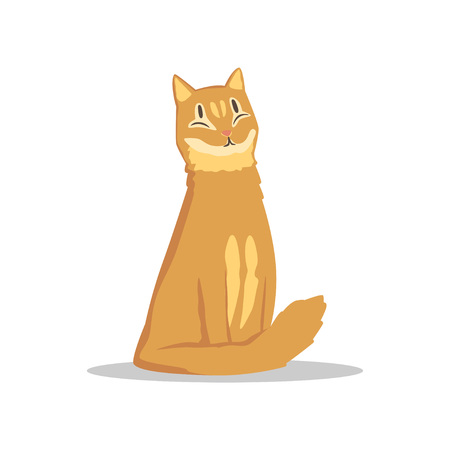 Fluffy red-haired cat sitting with happy muzzle. Cartoon pet character. Flat vector design for promo banner of zoo shop, veterinary clinic or animal shelter Illustration