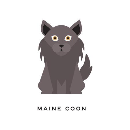 メインクーン猫の肖像。灰色の長いコート、首の周りのラフと大きな茶色の目を持つ愛らしい猫。家畜。漫画純粋なペットのキャラクター。フラット スタイルの分離ベクトル イラストレーション。 写真素材 - 92664082