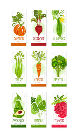 Vertical cards or banners set of fresh vegetables pumpkin, beetroot, cucumber, celery, carrot, broccoli, avocado, spinach, tomato. Hand drawn original vector design