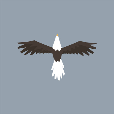 North American Bald Eagle character flying, symbol of freedom and independence vector illustration, cartoon style Ilustrace