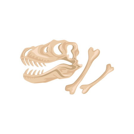 ティラノサウルス・レックスの頭蓋骨と骨恐竜の骨格の古代遺跡。先史時代の爬虫類。古生物学の概念。考古学アイコン。フラットベクトル設計