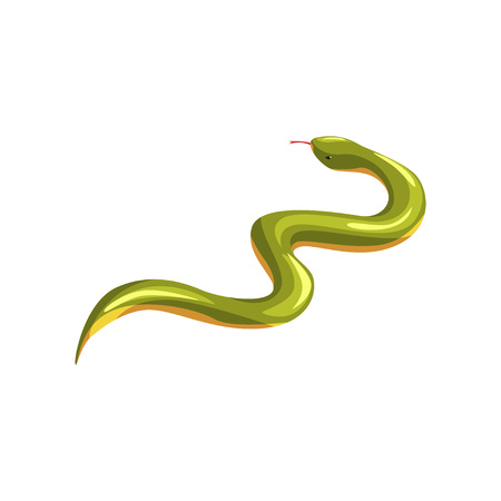 Cartoon eastern green mamba. Dangerous tropical snake with tongue out. Exotic domestic animal. Venomous serpent. Poisonous predator. Wildlife Flat vector design