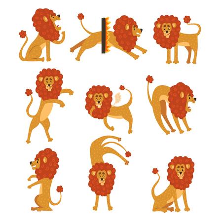 Coleção de leão em várias poses. Personagem de desenho animado do animal selvagem Africano. Grande predador forte. Tema do jardim zoológico. Ilustração em vetor plana isolada no branco Design para adesivo, crianças imprimir ou livro. Foto de archivo - 94040717