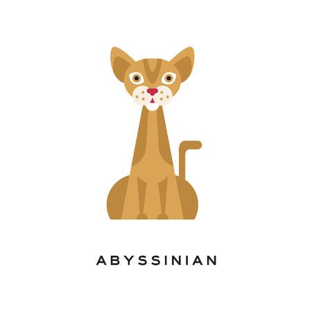 순종 된 아비시 니아 고양이. 갈색 얼룩 무늬가있는 우아한 짧은 머리 고양이, 근육질 몸체, 크고 뾰족한 귀와 빨간 코. 국내 동물의 만화 캐릭터입니다