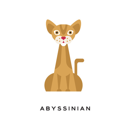 Purebred abyssinian cat. Elegant short-haired feline with brown tabby coat, muscular body, large, pointed ears and red nose. Cartoon character of domestic animal. Isolated flat vector illustration. Illustration