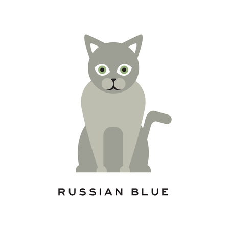 Russian blue cat. Adorable short-haired feline with gray coat, intelligent muzzle and big green eyes. Cartoon pet character. Purebred domestic animal in flat style. Vector design for of zoo store