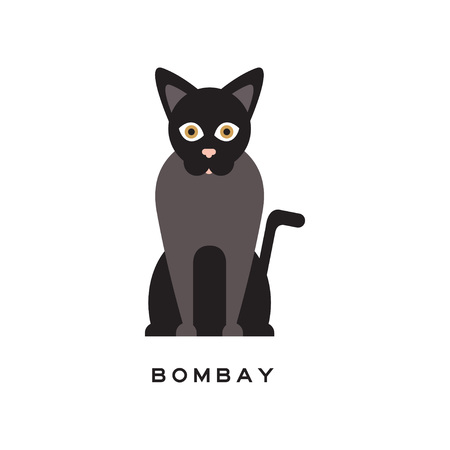 Elegant bombay cat. Type of short-haired feline with black coat, pink nose and brown eyes. Cartoon character of purebred domestic animal. Flat vector design