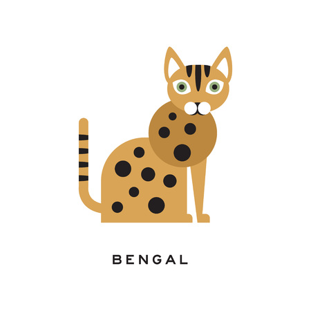 Purebred bengal cat. Cartoon domestic animal character with cute rounded muzzle, brown-spotted body and green eyes. Design for poster of zoo store or vet clinic. Isolated flat vector illustration. 일러스트