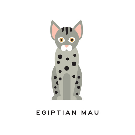 Cute egyptian mau cat. Medium-sized short-haired pet with brown eyes, gray fur and black spots on body. Cartoon purebred domestic animal. Flat vector design