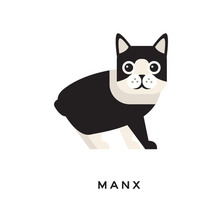 Portrait of manx cat. Short-haired tailless domestic animal with cute rounded head, shiny eyes, white and black fur. Cartoon character of purebred pet. Flat vector design for zoo shop or vet clinic.