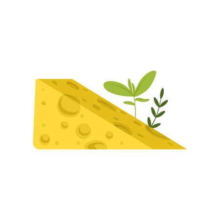 Triangular piece of Swiss cheese with green herbs. Tasty gourmet food. Healthy nutrition. Dairy product concept. Flat design for poster or flyer. Vector illustration isolated on white background.