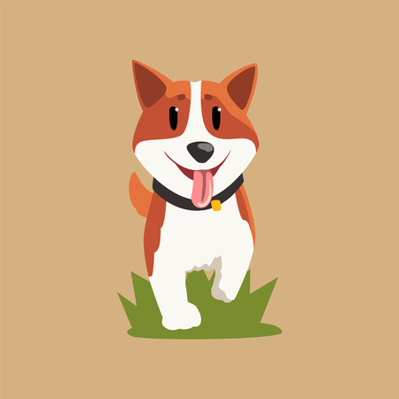 Adorable red-haired welsh corgi walking by green grass. Cartoon character of dog with happy muzzle. Purebred domestic animal in flat style. Isolated vector illustration for postcard, sticker or print. Stock Vector - 94147639