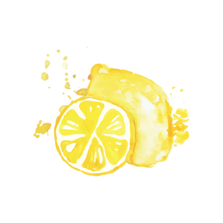 Hand drawn watercolor painting of whole and slice of lemon. Citrus fruit concept. Organic and tasty food. Healthy nutrition. Design for product label or packing sweets. Colorful vector illustration. Ilustração