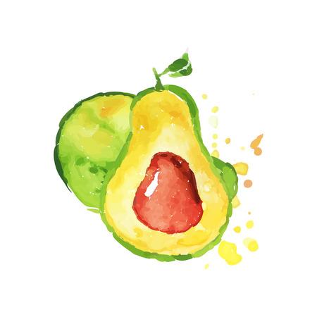 잘 익은 전체와 뼈와 아보카도의 절반입니다. 열 대 손으로 그린 과일입니다. 다채로운 수채화 그림입니다. 자연 채식 영양입니다. 레이블 또는 엠블럼