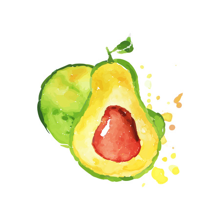 Ripe whole and half of avocado with bone. Tropical hand drawn fruit. Colorful watercolor painting. Natural vegetarian nutrition. Vector design for label or emblem Illustration
