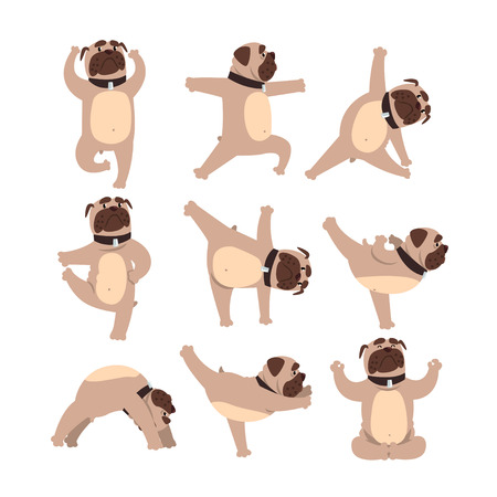 Funny bulldog in different poses of yoga. Healthy lifestyle. Dog doing physical exercises. Cartoon domestic animal character. Colorful flat vector design Çizim