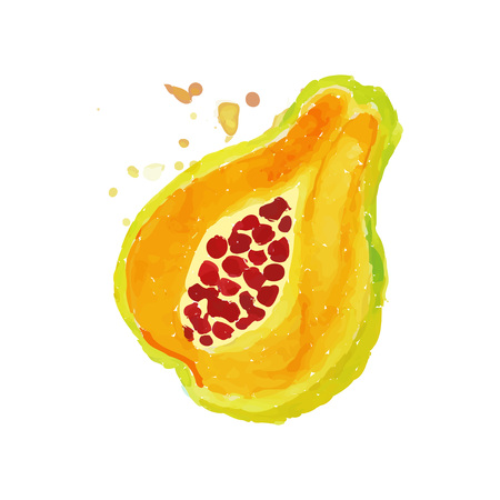 Bright watercolor painting of piece papaya. Tropical fruit concept. Vegetarian nutrition. Organic and tasty food. Design for label or emblem. Hand drawn vector