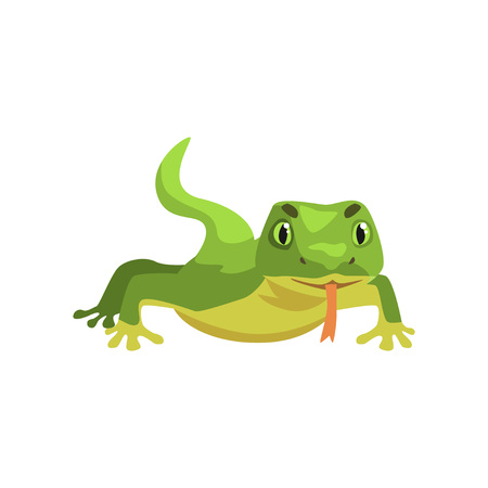Green lizard, amphibian animal cartoon vector Illustration