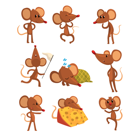 Set of cartoon mouse character in different actions. Running with sweep-net, sleeping, eating cheese, jumping, winking eye. Little brown rodent. Flat vector design Illustration