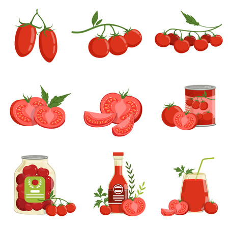 Fresh red healthy tomatoes and tomato products set of vector Illustrations isolated on a white background