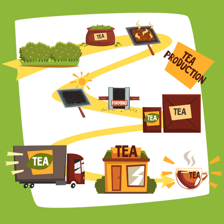 Tea production, tea manufacturing process from plantation to shop cartoon vector illustration Иллюстрация