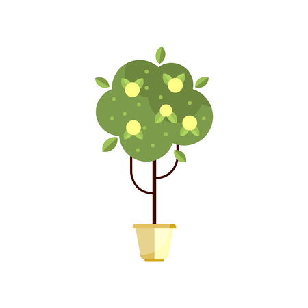 Tree in pot with green foliage and fruits, indoor flower in pot, elegant home decor vector Illustration Foto de archivo - 95159902