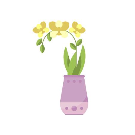 Yellow orchid house plant, indoor flower in pot, elegant home decor vector Illustration Illustration