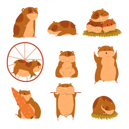 Leuke stripfiguren hamster set, grappige dieren in verschillende situaties vectorillustraties
