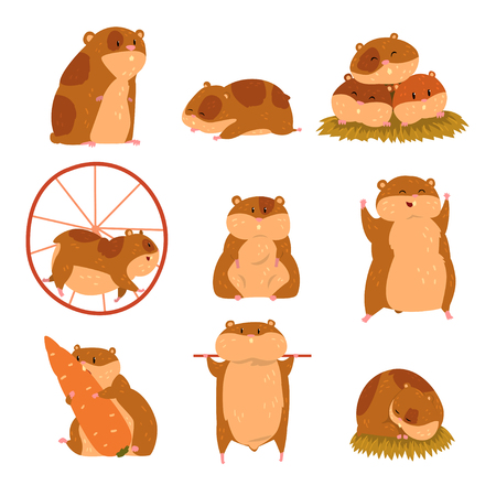 Zestaw znaków kreskówka chomika, zabawne zwierzę w różnych sytuacjach ilustracje wektorowe Ilustracje wektorowe
