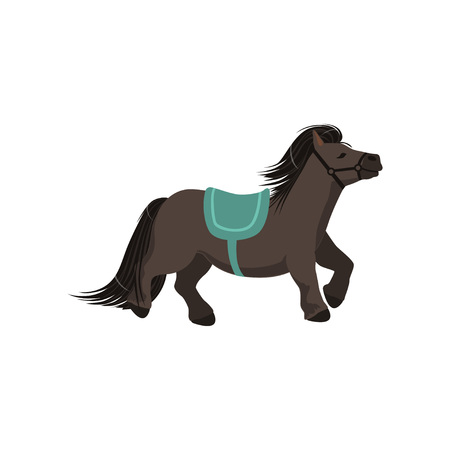 Cute dark grey pony, thoroughbred horse vector Illustration isolated on a white background