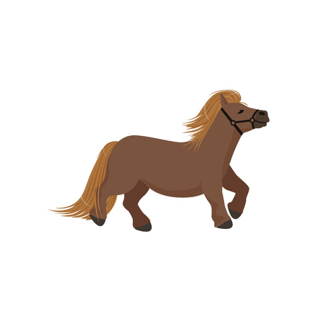 Cute brown pony, thoroughbred horse vector Illustration