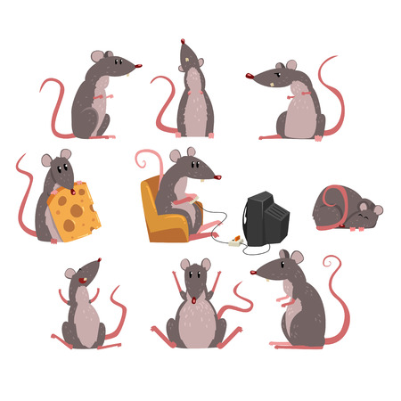 Cute grey mouse set, funny rodent character in different situations vector Illustrations on a white background