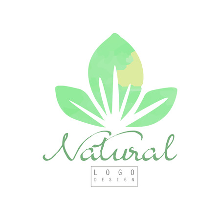Natural logo template with abstract green leaves vector illustration Vettoriali