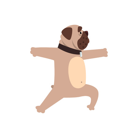 French bulldog working out yoga exercise. Funny dog practicing yoga cartoon vector illustration on a white background. Ilustração