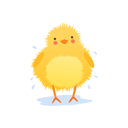 Cute baby chicken shaking water after bathing,, funny cartoon bird character vector Illustration on a white background