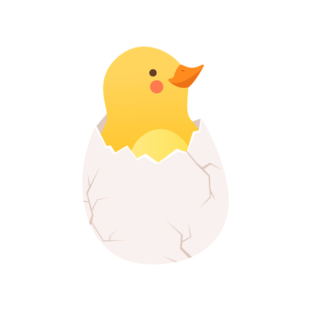 Cute baby chicken hatching, funny cartoon bird character sitting in egg shell vector Illustration on a white background Illustration