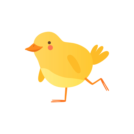 Cute baby chicken walking, funny cartoon bird character vector Illustration on a white background