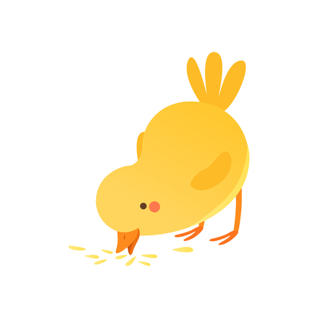 Cute baby chicken pecking grain, funny cartoon bird character vector Illustration isolated on a white background. Illustration