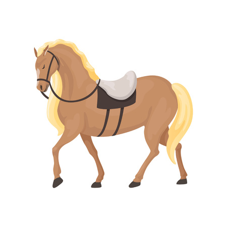 Thoroughbred horse, equestrian professional sport vector Illustration Çizim