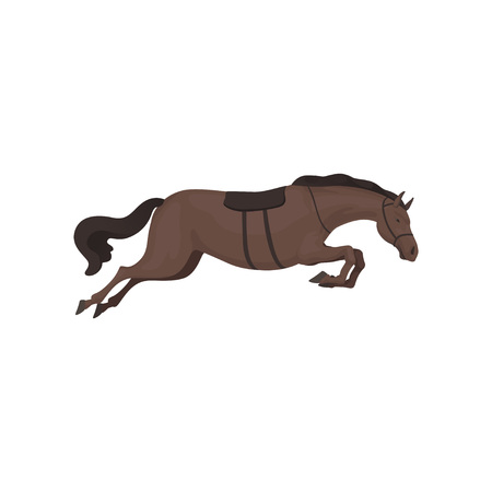 Black running horse, equestrian professional sport vector Illustration