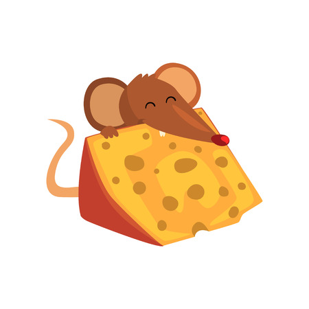 Cute brown mouse eating big piece of cheese, funny rodent character cartoon vector Illustration on a white background.