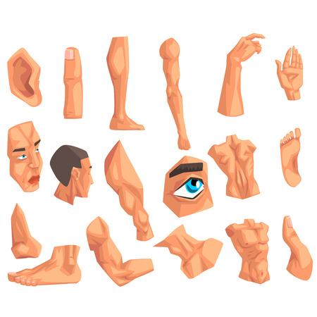 Male body parts set of vector illustrations on a white background.