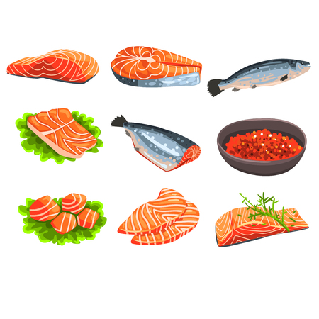Fresh salmon fish set, fillet, steak and caviar, seafood product vector Illustrations on a white background