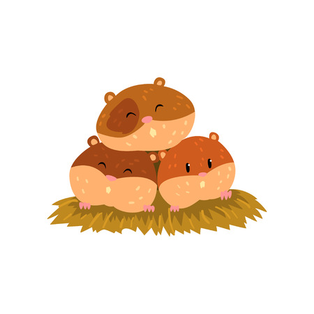 Cute cartoon hamster characters sleeping, funny brown rodent animal pet vector Illustration on a white background Illustration