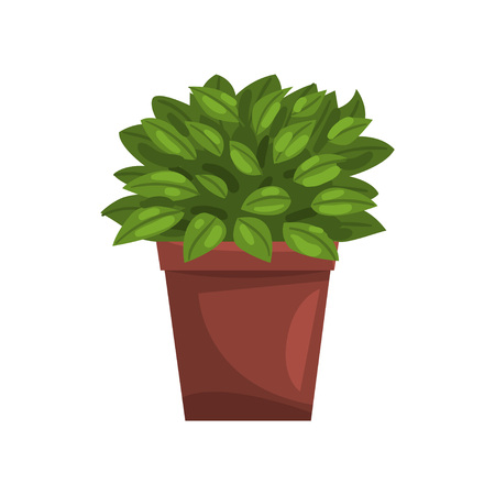 Philodendron indoor house plant in brown pot, element for decoration home interior vector Illustration on a white background Illustration