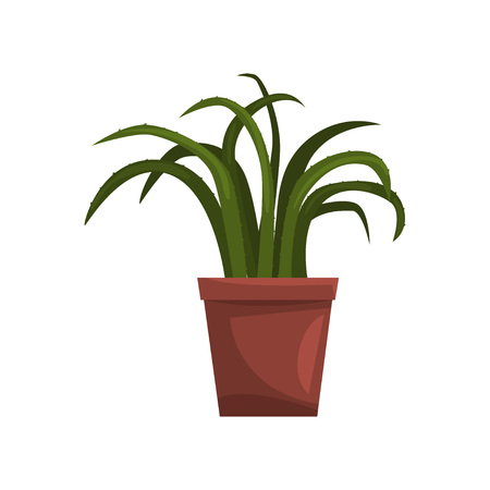 Aloe indoor house plant in brown pot, element for decoration home interior vector Illustration on a white background Ilustracja